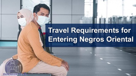 Travel Requirements for Entering Negros Oriental – 2021