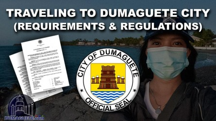 Traveling to Dumaguete City (Requirements & Regulations)