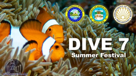 Dive 7 Summer Festival 2021 in Dauin (Schedule)