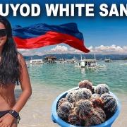 Manjuyod White Sandbar & Bais Dolphin Watching, Negros Oriental
