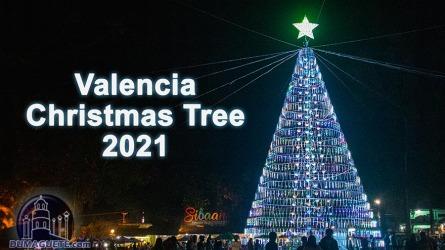 Valencia Christmas Tree Lighting 2021